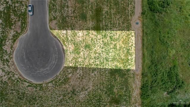 412 La Pointe, Alton, TX 78573 (MLS #362593) :: The MBTeam