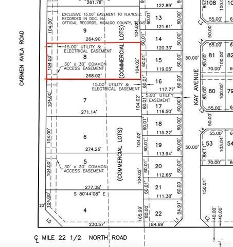 9710 Carmen Avila, Edinburg, TX 78542 (MLS #362664) :: The Lucas Sanchez Real Estate Team