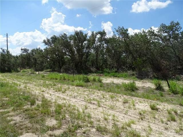 0 Brooks County Road 406, Falfurrias, TX 78355 (MLS #362810) :: API Real Estate