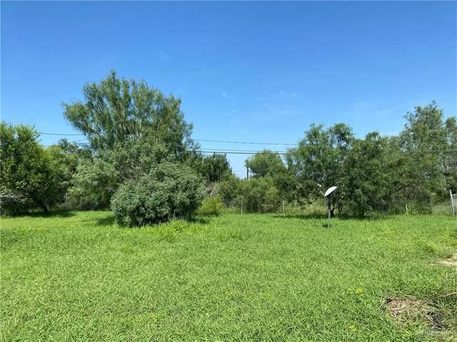 2900 Turtle, Palmview, TX 78572 (MLS #362820) :: Imperio Real Estate