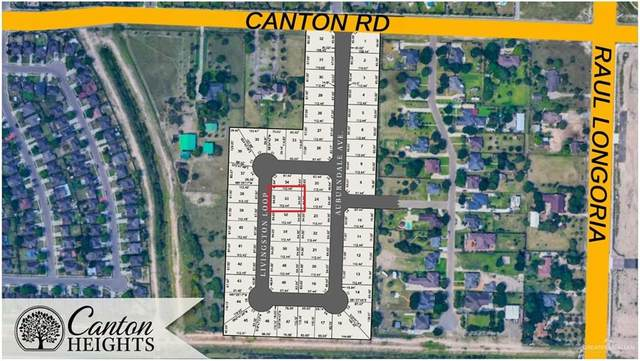 00 Canton, Edinburg, TX 78542 (MLS #364475) :: API Real Estate