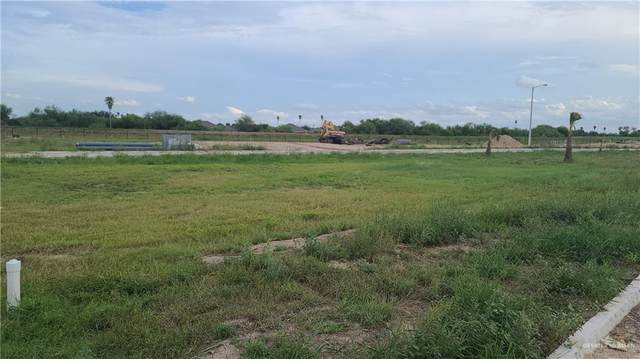 13908 Saint Patricio, Mcallen, TX 78504 (MLS #365133) :: eReal Estate Depot