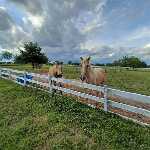 LOT #519 Buck Fawn, Edinburg, TX 78539 (MLS #366876) :: eReal Estate Depot
