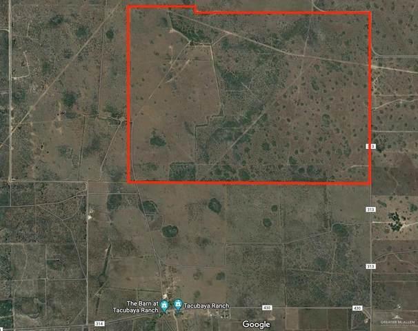 25 acres Cr 313, Encino, TX 78353 (MLS #367251) :: Jinks Realty