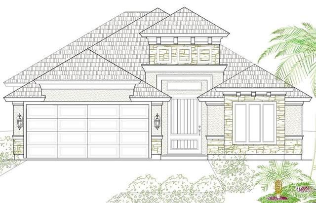 508 Pine Oak, Donna, TX 78537 (MLS #367269) :: The Ryan & Brian Real Estate Team