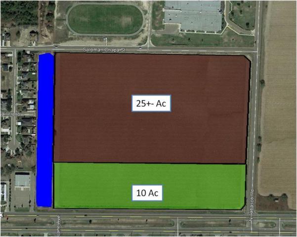 720 E Expressway 83, La Joya, TX 78560 (MLS #169689) :: Jinks Realty