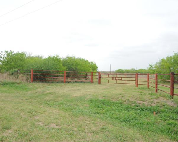61 E Fm 186, Raymondville, TX 78580 (MLS #219510) :: Jinks Realty