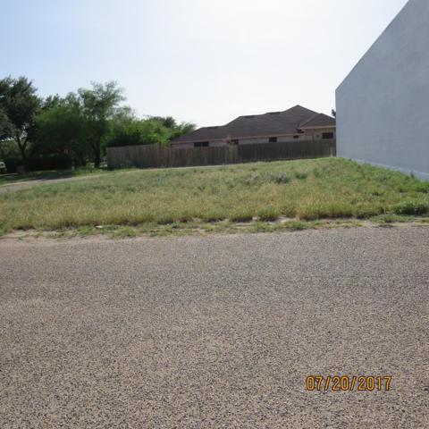 3401 N Ware Road, Mcallen, TX 78501 (MLS #220860) :: Jinks Realty