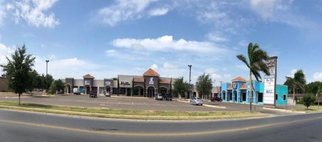 2315 Harvey Avenue, Mcallen, TX 78501 (MLS #221528) :: Jinks Realty