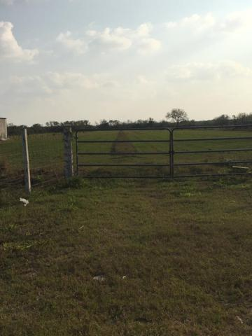 4902 E Ramseyer Road, Edinburg, TX 78542 (MLS #222441) :: The Lucas Sanchez Real Estate Team