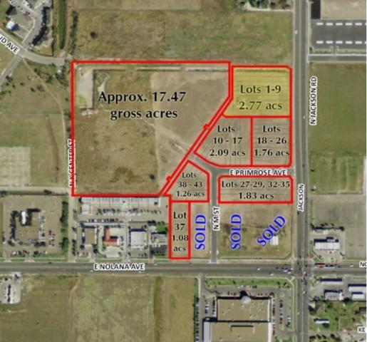 4301 N Jackson Road, Mcallen, TX 78501 (MLS #302814) :: Jinks Realty