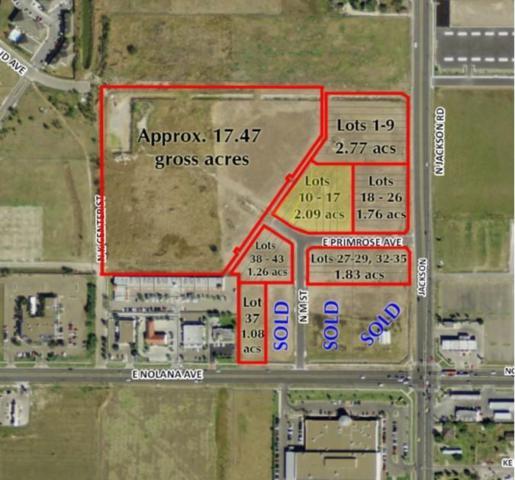 1325 E Primrose Avenue, Mcallen, TX 78501 (MLS #302816) :: Jinks Realty