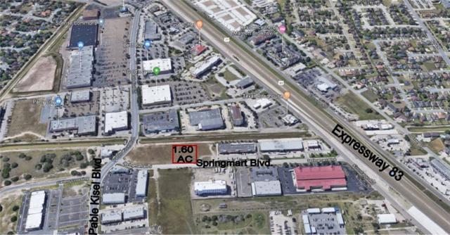 748 Springmart Boulevard, Brownsville, TX 78526 (MLS #304206) :: Jinks Realty