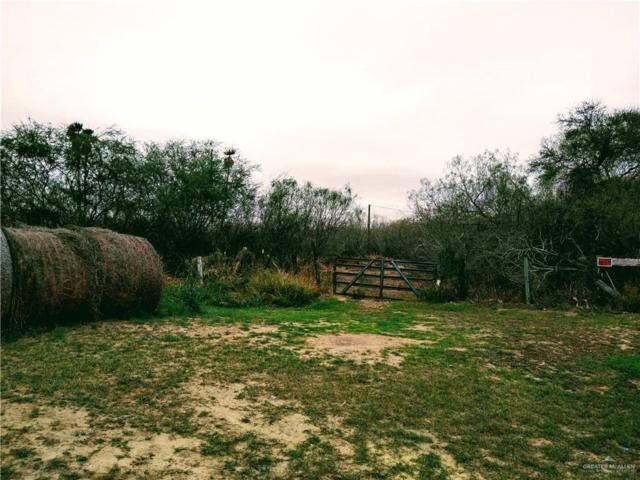 0 Fm 493 Highway, Hargill, TX 78549 (MLS #304504) :: Jinks Realty