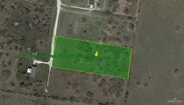 Falfurrias, TX 78355 :: The Ryan & Brian Real Estate Team