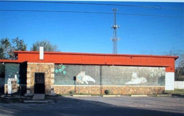 Mercedes, TX 78596 :: The Lucas Sanchez Real Estate Team