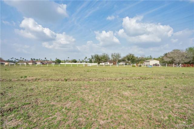 403 E Nebraska Road, Alamo, TX 78516 (MLS #310438) :: The Ryan & Brian Real Estate Team