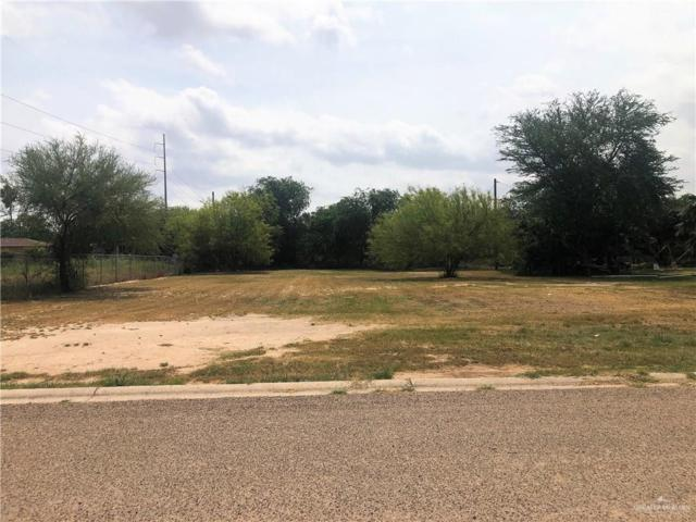 2011 La Estrella Street, Palmview, TX 78572 (MLS #313467) :: The Ryan & Brian Real Estate Team