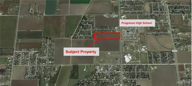 1015 Fm 1015 Street, Progreso, TX 78579 (MLS #316654) :: The Lucas Sanchez Real Estate Team