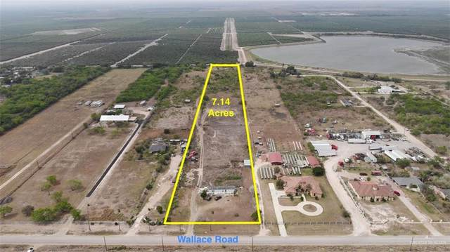 17007 N Wallace Road, Edinburg, TX 78541 (MLS #330567) :: eReal Estate Depot