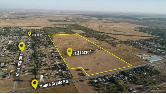 000 Monte Cristo Road, Mcallen, TX 78541 (MLS #348131) :: The MBTeam