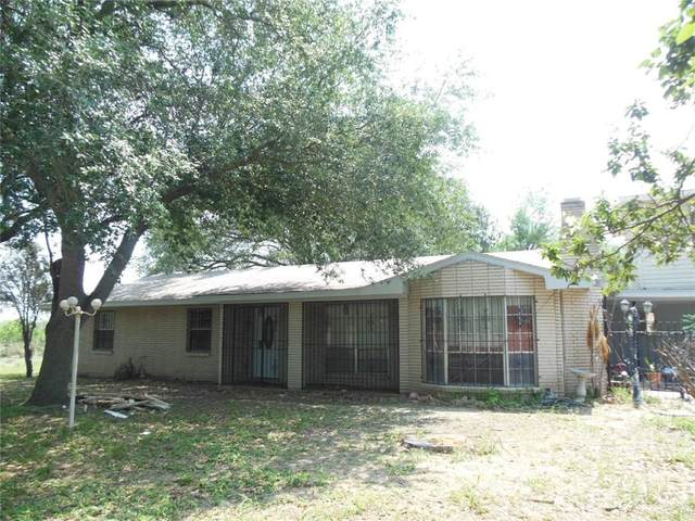 10212 N Bentsen Road, Mcallen, TX 78504 (MLS #353199) :: eReal Estate Depot