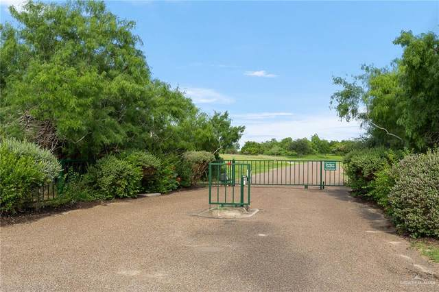16230 The Hills, Edinburg, TX 78542 (MLS #355030) :: API Real Estate
