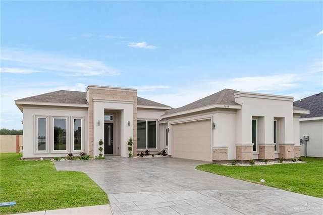 2203 David, San Juan, TX 78589 (MLS #356465) :: API Real Estate