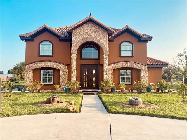 517 E Earling, Alamo, TX 78516 (MLS #363088) :: Imperio Real Estate