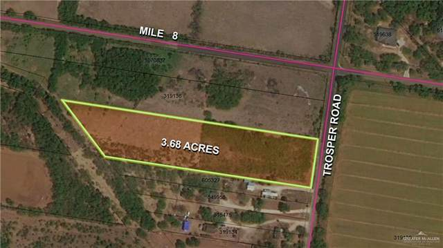 11213 W Los Ebanos W, Mission, TX 78573 (MLS #367429) :: Imperio Real Estate