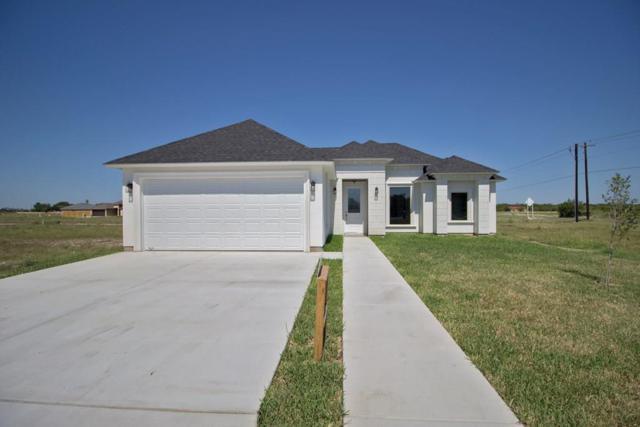 1345 Deluxe Street, Alamo, TX 78516 (MLS #221204) :: Top Tier Real Estate Group
