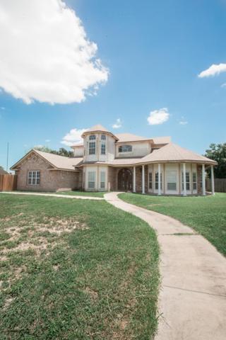 1501 Wildwood Drive, Weslaco, TX 78596 (MLS #222617) :: eReal Estate Depot