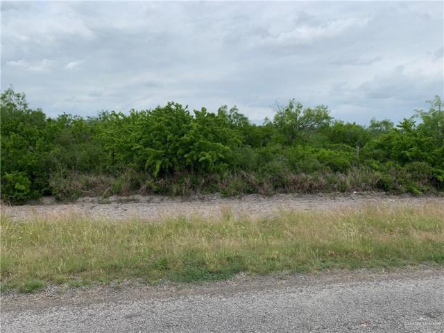 0 W Fm 3066 Street, Falfurrias, TX 78355 (MLS #310875) :: HSRGV Group