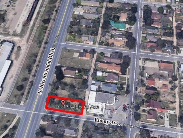 1714 Ebony Avenue, Mcallen, TX 78501 (MLS #313879) :: Rebecca Vallejo Real Estate Group