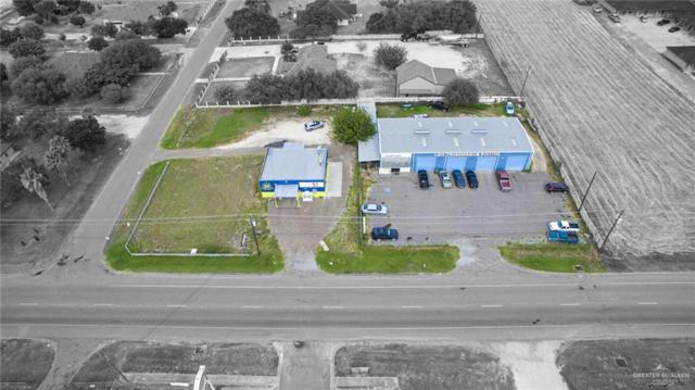 704 N Bentsen Palm Drive, Palmview, TX 78572 (MLS #318200) :: eReal Estate Depot