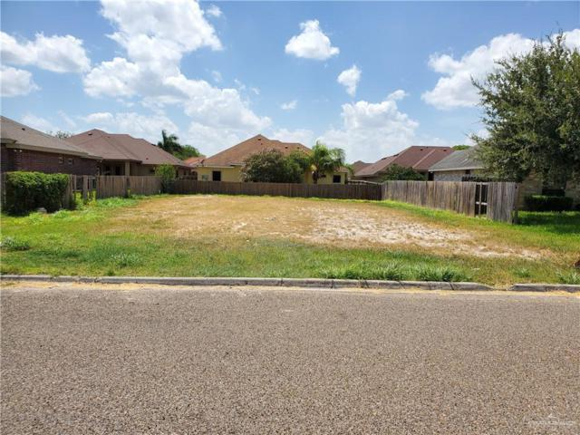 000 Laura Drive, Alamo, TX 78516 (MLS #319454) :: The Ryan & Brian Real Estate Team