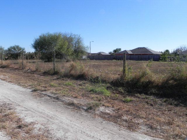 Mcallen, TX 78504 :: Jinks Realty