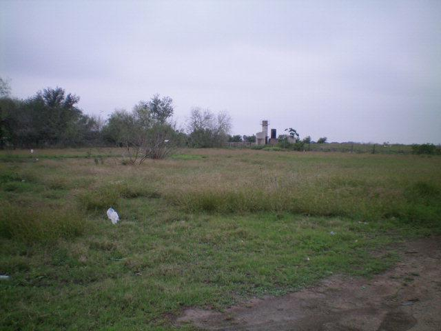 000 Sugar Cane Drive, Weslaco, TX 78569 (MLS #153633) :: Jinks Realty
