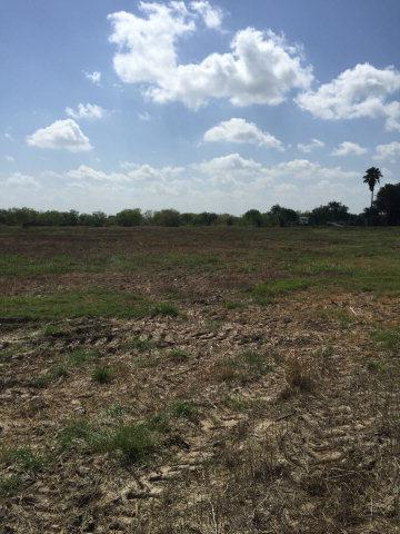 3602 Terry Road, Edinburg, TX 78541 (MLS #187090) :: Jinks Realty