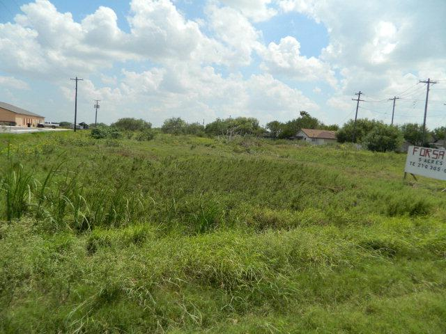 0 W State Highway 107, Elsa, TX 78543 (MLS #187892) :: HSRGV Group