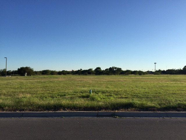 435 E Los Alamos Drive, Alamo, TX 78577 (MLS #190111) :: Jinks Realty