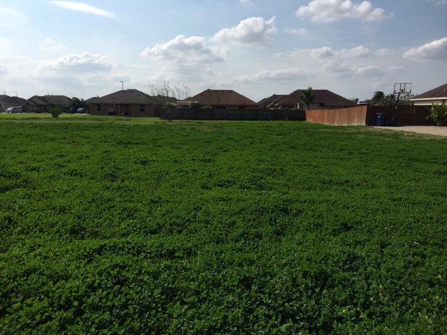 000 Jeffery Drive, Edinburg, TX 78526 (MLS #192782) :: Top Tier Real Estate Group