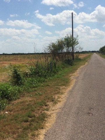 0 N Mile 14 1/2, Donna, TX 78537 (MLS #197310) :: Jinks Realty
