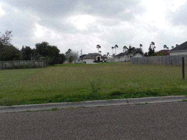 2214 E 10th Street, Weslaco, TX 78596 (MLS #203494) :: Jinks Realty
