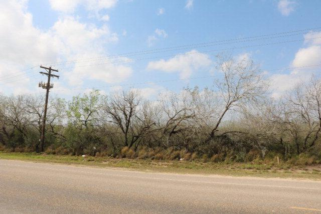 23415 Moorefield Road, Mission, TX 78572 (MLS #203606) :: eReal Estate Depot