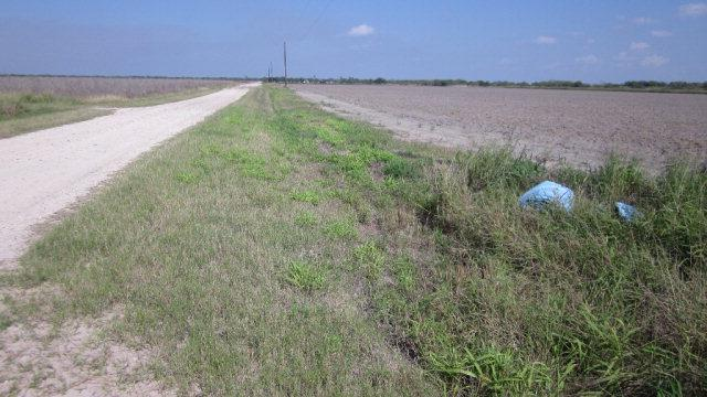 tbd E Uncle Peters Road, La Villa, TX 78562 (MLS #205825) :: Jinks Realty