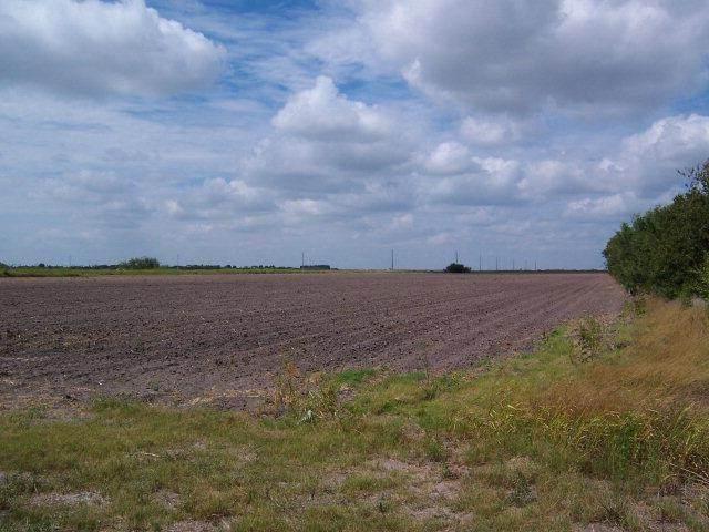0 Expressway 83, Harlingen, TX 78552 (MLS #206404) :: The Lucas Sanchez Real Estate Team