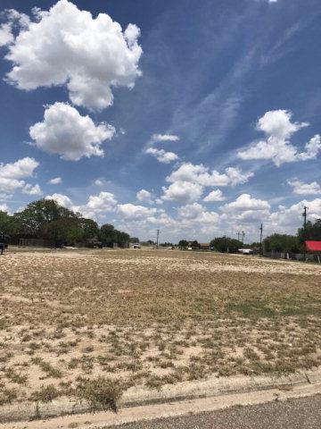 101 5th Street, La Joya, TX 78560 (MLS #208113) :: Top Tier Real Estate Group