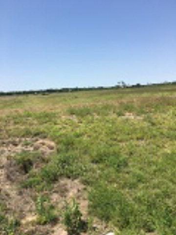 8918 W Mile 3, Penitas, TX 78574 (MLS #208474) :: Jinks Realty
