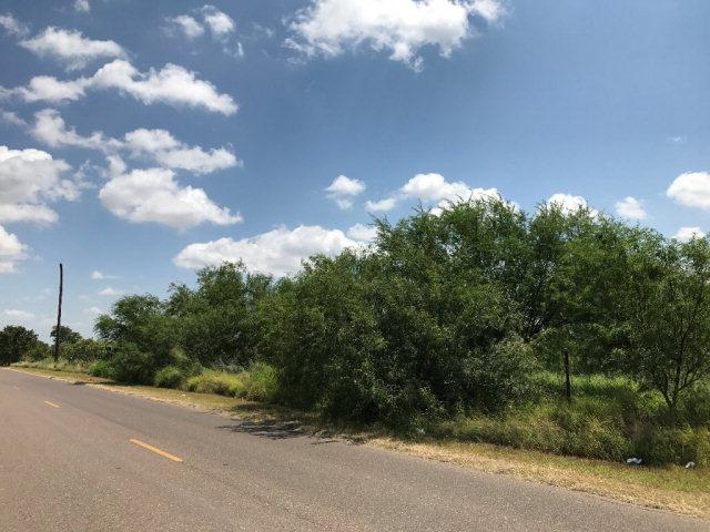 Mile 9 N La Homa Road, Mission, TX 78572 (MLS #209398) :: BIG Realty
